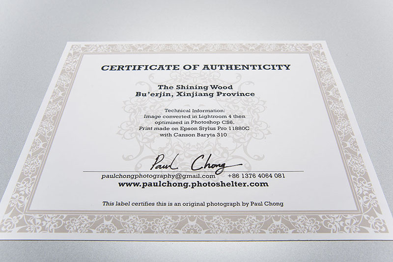Do you attach the Certificate Of Authenticity (COA) on the back or ...